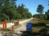 Natuurgebied Klitplantage.